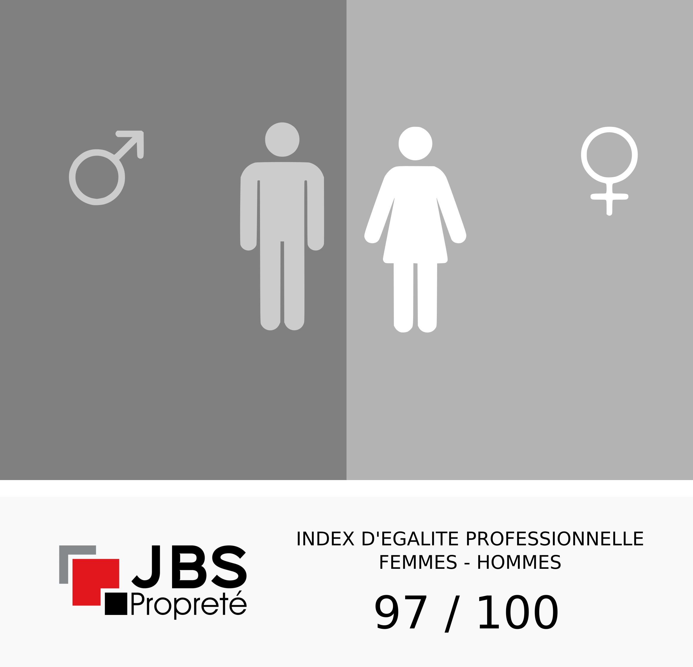 index egalite professionnelle